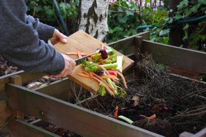 De residuos orgánicos a tierra fértil ¿Qué es el compost?